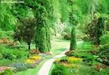 لعبة تلوين الطبيعة الخضراء 2014