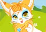 لعبة تلبيس قطة مغامرة